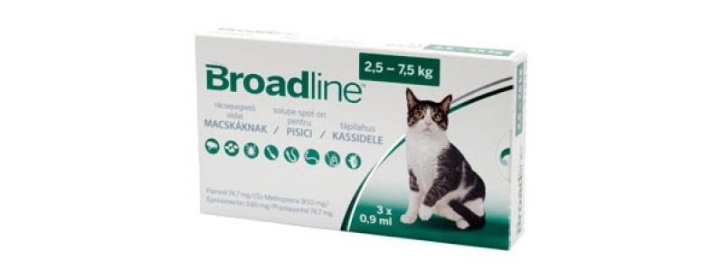 giardia în tratamentul pisicilor hpv on skin treatment