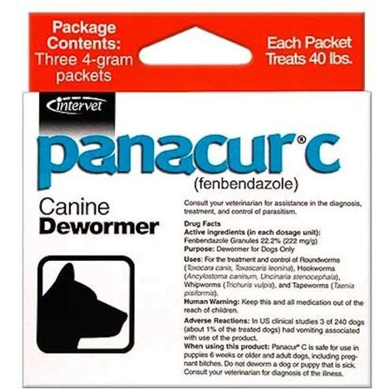 Chihuahua și prevenirea viermilor - Panacur giardia gatos