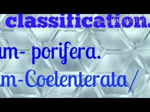 Enterobiasis sintomas - csrb.ro, Giardia sintomas portugues