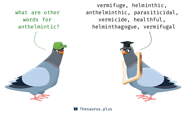 meaning of anthelmintic word