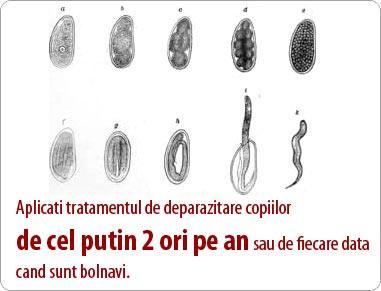 tratamentul cu viermi la adulți și copii