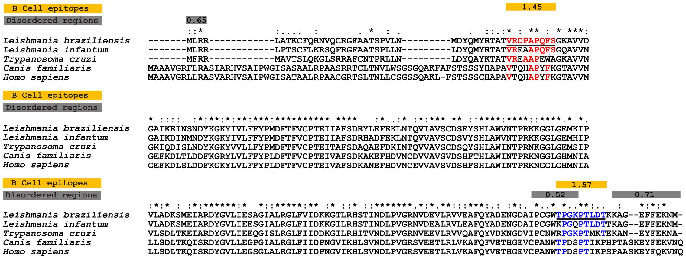 papilloma virus zone îndepărtarea verucilor genitale cu solkovagin