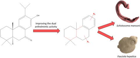 Anthelmintic activity methods. Curs 3_Nucleul Structura, Anthelmintic activity methods