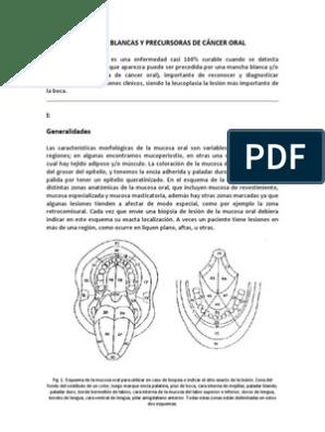 csrb.rov csrb.ro Omf - Cancer bucal monografia