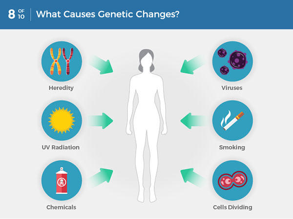 cancer genetic or environmental