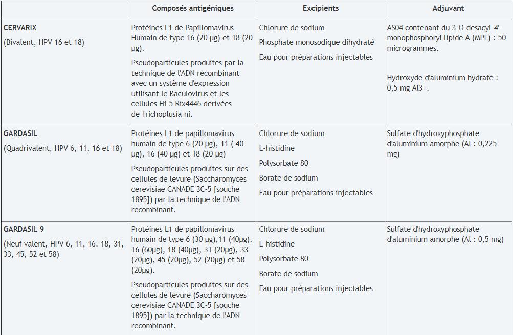 papillomavirus vaccin composition que es la cancer de mama