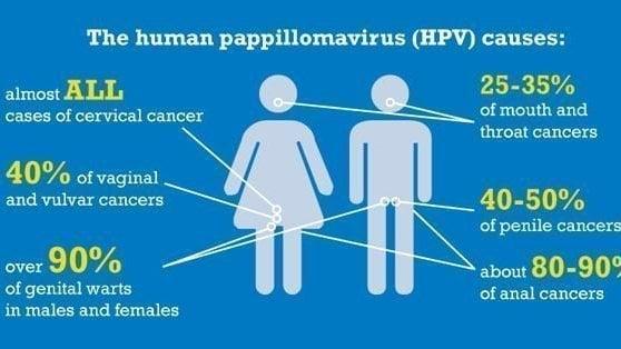 vaccin hpv age adulte