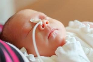 paraziți în tratamentul nou născuților