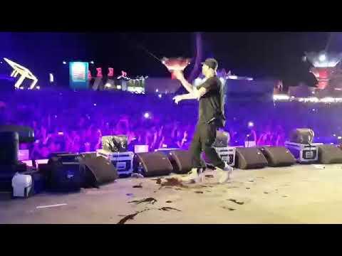 Armin van Buuren ネ冓 Steve Aoki la Neversea テョnainte de Untold