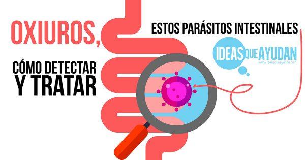 como se transmite el parasito oxiuros