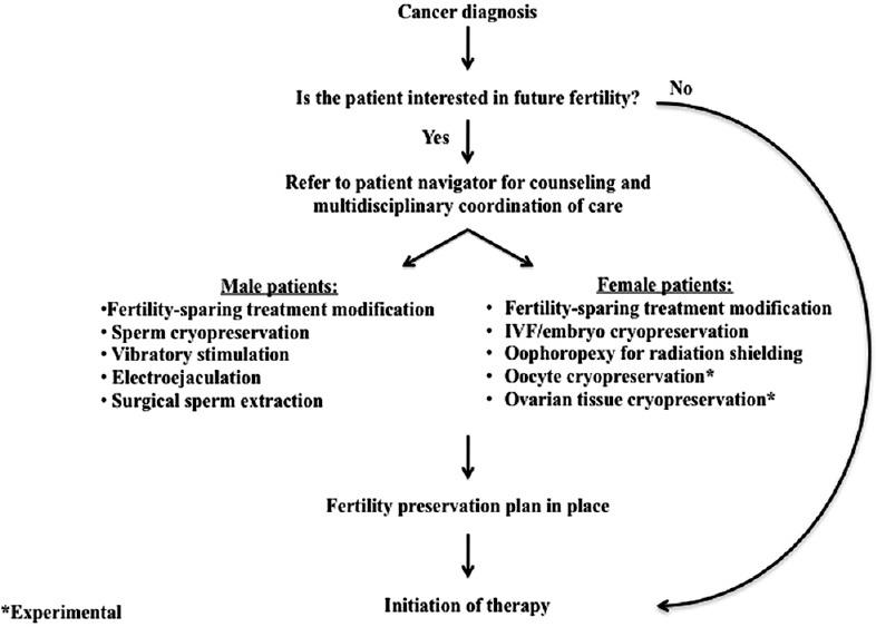 endometrial cancer fertility preservation