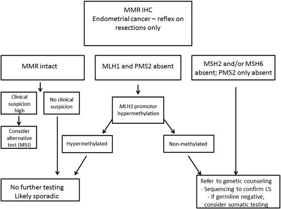 Panel PreSENTIA - cancer mamar/ginecologic (26 gene)