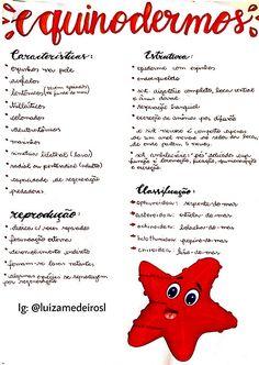 HELMINTOLOGIA - Definiția și sinonimele helmintologia în dicționarul Portugheză