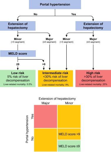 Ghid de diagnostic şi tratament pentru HCC (hepatocarcinomul)