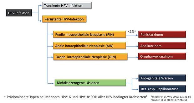 hpv impfung manner kostenubernahme