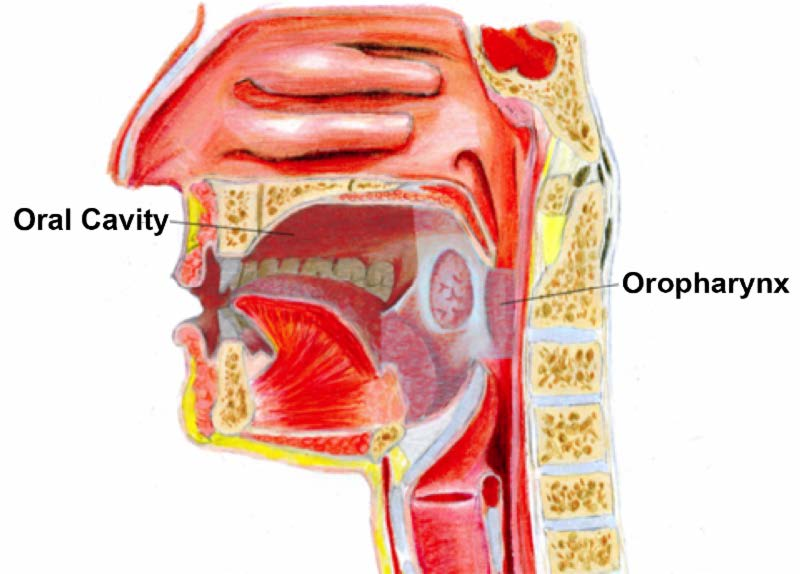 hpv symptoms of the throat