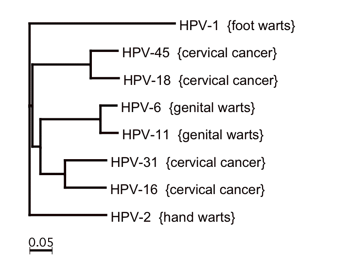 Hpv type that causes genital warts. Socant ! - Page 6 - Forumul Softpedia