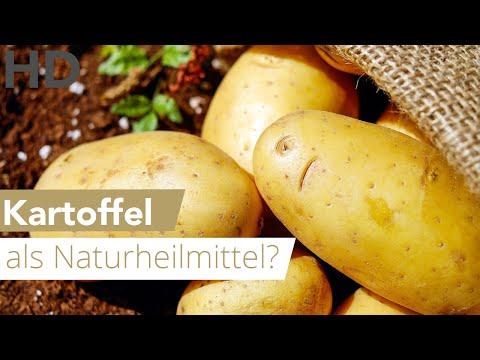 Kartoffeln toxine. Übersetzung für