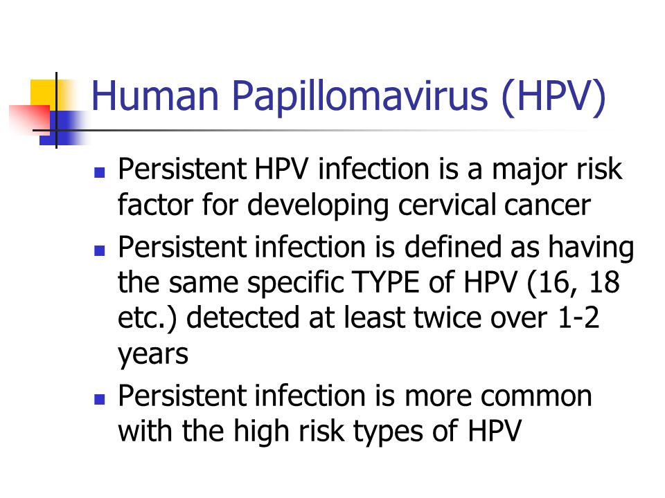 papilloma virus defined