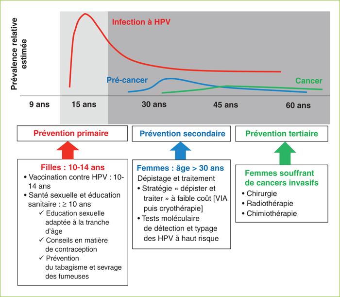 papillomavirus niveau 16
