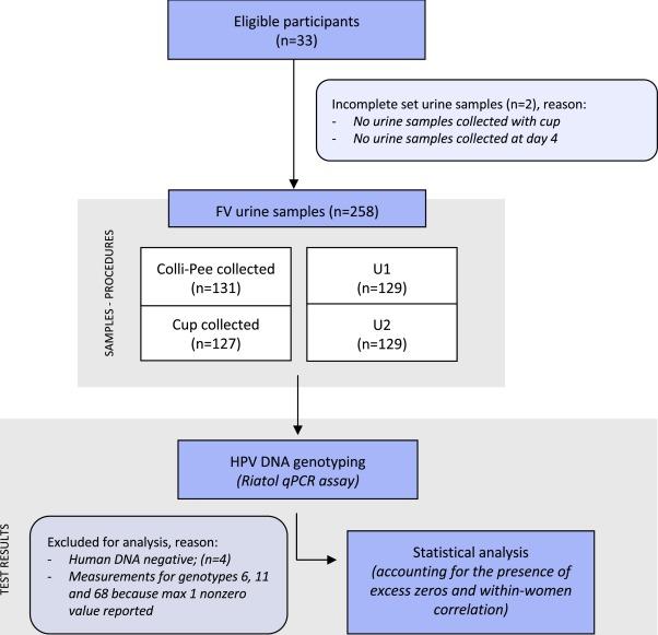 Papillomavirus sang urine Papillomavirus et urine