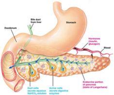 paraziti subcutanati antihelmintice eficiente și sigure