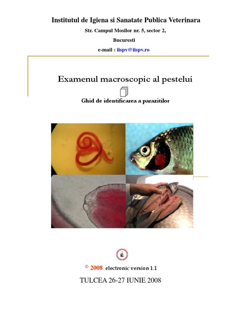 Parasites 12 30cps - Herbagetica | Eherbal